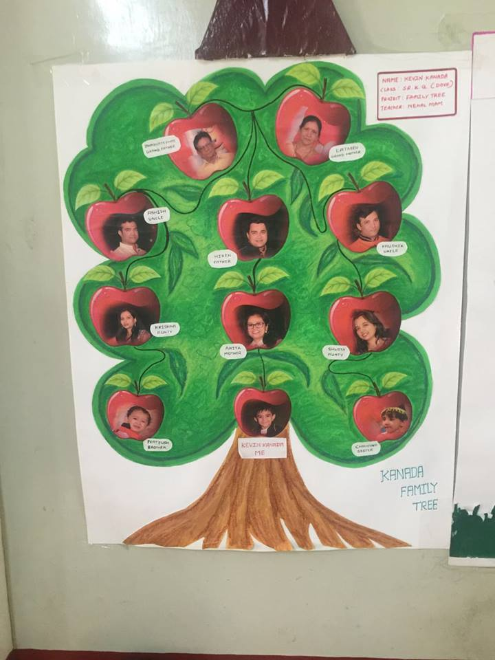 Senior KG Project My Family Tree ASIS Pre Primary
